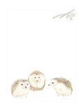 Baby Animals IV