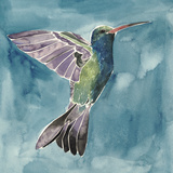 Watercolor Hummingbird I