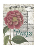 Musical Paris III
