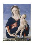 Madonna and Child  c1467-8