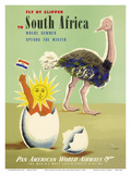 Fly by Clipper to South Africa - Where Summer Spends the Winter - Pan American World Airways