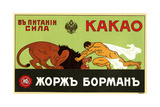 The Power to Defeat Lions in the Nutrition of George Borman Cocoa