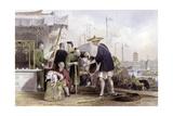 Cat Tea Merchants