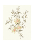 Flowers on White II