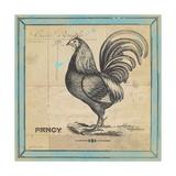 Fancy Rooster
