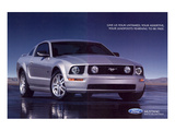 2005 Mustang - Your Untamed