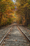 Autumn Railroad Tracks  White Mountain  New Hampshire