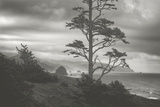Moody Cannon Beach  Black and White  Oregon Coast