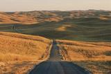 A Road Leads Through a Remote Prairie Landscape