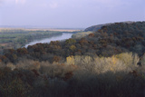 Trees Line the Shores and Surrounding Bluffs of the Missouri River