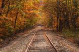 Autumn Tracks into Fall  Bartlett  New Hampshire