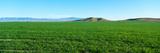 Spring Valley  Antelope Valley  California