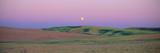 Moonrise over Pea Fields  the Palouse  Washington State