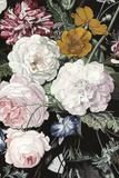 Baroque Botanica II Reproduction d'art par Naomi McCavitt