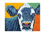 Colorful Country Cows I Reproduction d'art par Carolee Vitaletti
