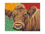 Colorful Country Cows II Reproduction d'art par Carolee Vitaletti