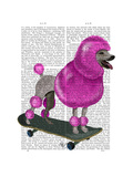Pink Poodle and Skateboard