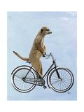 Meerkat on Bicycle Reproduction d'art par Fab Funky