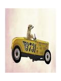Meerkat in Hot Rod Reproduction d'art par Fab Funky