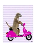 Meerkat on Pink Moped Reproduction d'art par Fab Funky