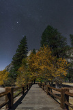 Planet Jupiter  in Constellation Taurus  Above a Footbridge over the Merced River