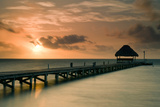 Pier with Palapa at Sunrise  Ambergris Caye  Belize