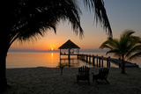 Pier with Palapa on Caribbean Sea at Sunrise  Maya Beach  Stann Creek District  Belize