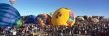 25th Albuquerque International Balloon Fiesta  New Mexico
