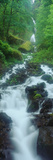 Northern Falls at Silver Falls State Park  Salem  Oregon