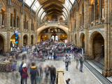 Visitors at the National History Museum in London  England