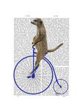Meerkat on Blue Penny Farthing Reproduction d'art par Fab Funky