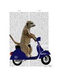 Meerkat on Dark Blue Moped Reproduction d'art par Fab Funky