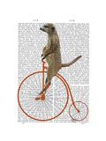 Meerkat on Orange Penny Farthing Reproduction d'art par Fab Funky