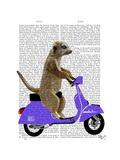 Meerkat on Lilac Moped Reproduction d'art par Fab Funky