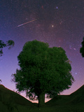 A Bright Meteor Shoots across the Sky Near Jupiter