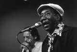 Bluesman Muddy Waters (1915-1983) on Stage in 1982