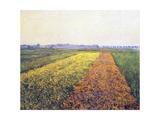 Landscape  1848