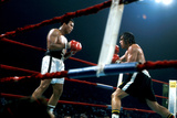 Ing Game Between Mohammed Ali and Alfredo Evanglista in Washington May 16  1977