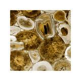 Agate in Gold I