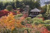 The Silver Pavilion and Gardens in Autumn