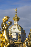 Petrodvorets (Peterhof) (Summer Palace)  Near St Petersburg  Russia