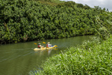 Kayaking on the Wailua River  Kauai  Hawaii  United States of America  Pacific