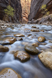 The Narrows of the Virgin River in the Fall