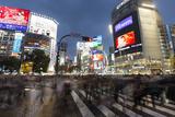 Neon Signs and Pedestrian Crossing (The Scramble) at Night  Shibuya Station  Shibuya  Tokyo  Japan