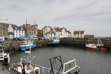 Pittenweem Harbour  Fife Coast  Scotland  United Kingdom