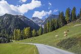 Road to Albula Pass  Graubunden  Swiss Alps  Switzerland  Europe