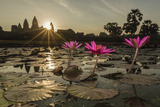 Sunrise over the West Entrance to Angkor Wat  Angkor  Siem Reap  Cambodia
