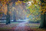 Autumn in Kew Gardens  UNESCO World Heritage Site  Kew  Greater London  England  UK