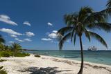 Spotts Beach  Grand Cayman  Cayman Islands  West Indies  Caribbean  Central America