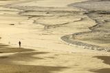 Woman Jogging at Sunrise on Gwithian Beach  Cornwall  England  United Kingdom